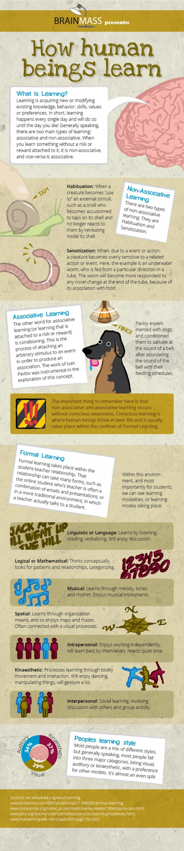How-Human-Beings-Learn-Infographic