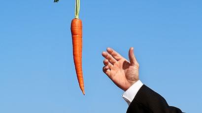 carrot-stick-pic